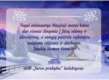 Jaukių žiemos švenčių!